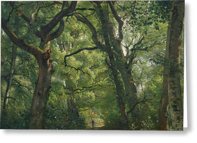 Path in the Forest Greeting Card by Henri Joseph Constant Dutilleux