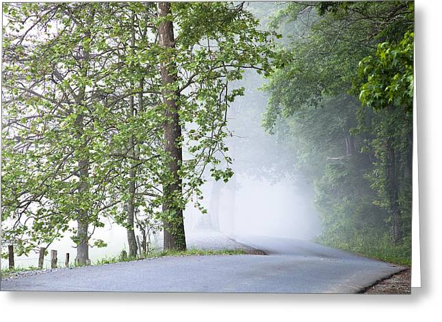 Path into the Fog Greeting Card by Andrew Soundarajan