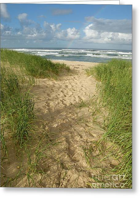 Sea Grass In The Sand Greeting Cards - Path on beach leading to Ocean Greeting Card by Sami Sarkis