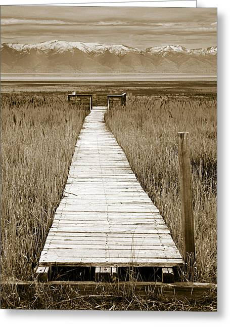 Marsh Path Greeting Cards - Path to Beauty 1 Greeting Card by Marilyn Hunt