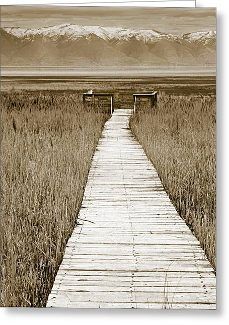 Walk Off Greeting Cards - Path to Beauty 2 Greeting Card by Marilyn Hunt