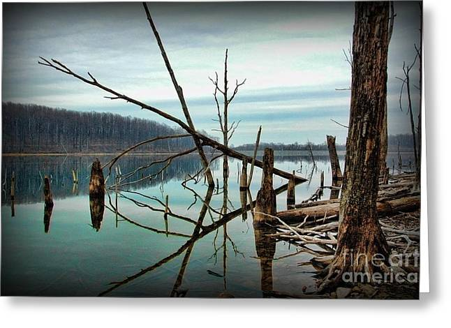 Quite Photographs Greeting Cards - Path to enlightment Greeting Card by Paul Ward