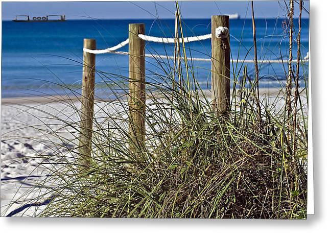 Susan Leggett Greeting Cards - Path to the Beach Greeting Card by Susan Leggett