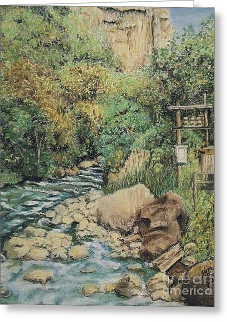 Rapids Pastels Greeting Cards - Path to the River Greeting Card by Jim Barber Hove