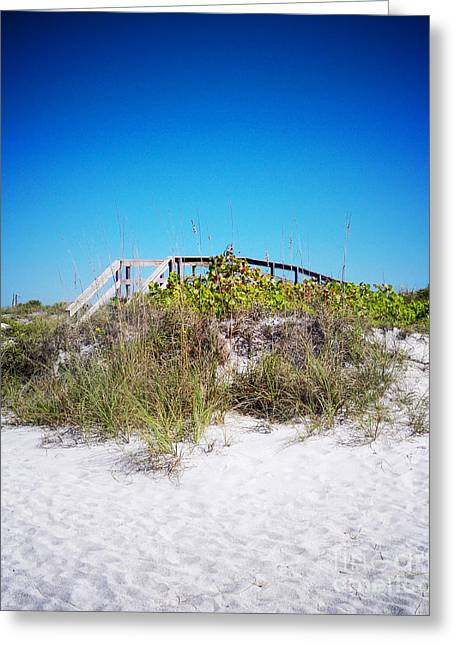 Florida Bridge Greeting Cards - Pathway Home Vanilla Pop Greeting Card by Chris Andruskiewicz