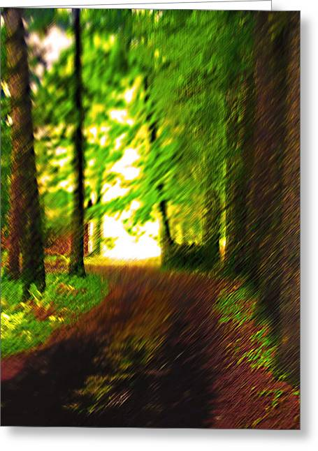 Renewing Digital Art Greeting Cards - Pathway to Light Greeting Card by Steve Ohlsen