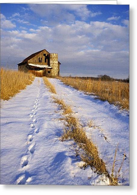 Indiana Scenes Greeting Cards - Pathway to Shelter - FS000412 Greeting Card by Daniel Dempster