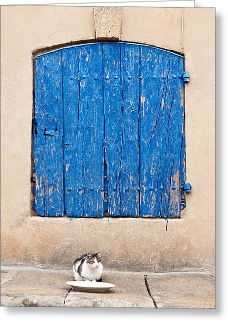 French Doors Greeting Cards - Patient Cat in Provence Greeting Card by Kent Sorensen
