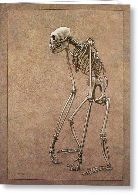 Primates Greeting Cards - Patient Greeting Card by James W Johnson