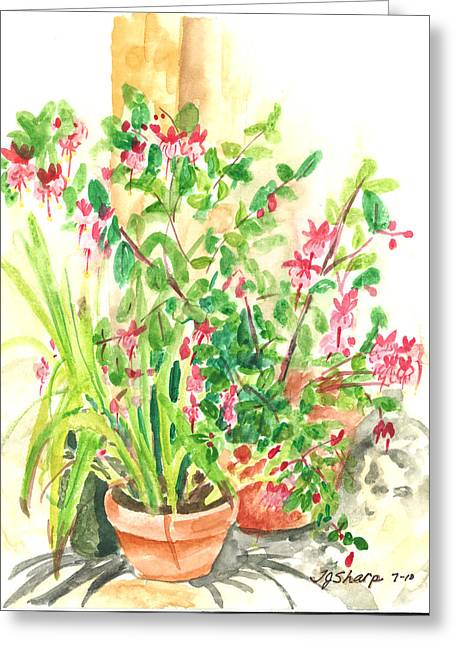 Patio Pots Greeting Card by Teresa J Sharp