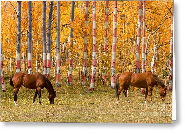 Animal Patriotic Art Greeting Cards - Patriotic Autumn Greeting Card by James BO  Insogna