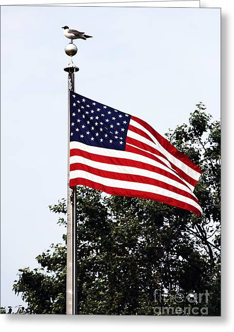 Patriotic Photography Greeting Cards - Patriotic Long Beach Island Greeting Card by John Rizzuto