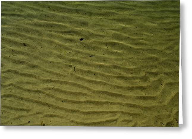 Sand Pattern Greeting Cards - Pattern Of Rippled Sand In Shallow Greeting Card by Todd Gipstein