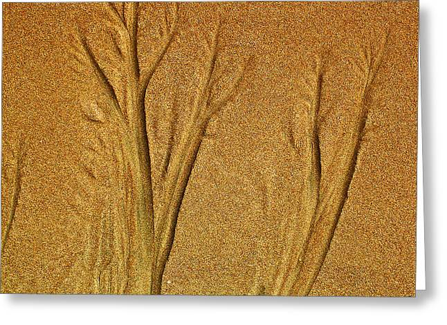 Sand Patterns Greeting Cards - Patterns in the Sand Greeting Card by Elizabeth Hoskinson