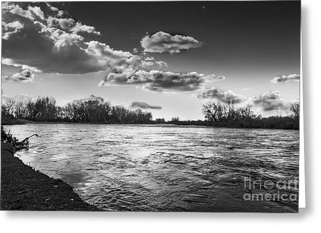 River Flooding Greeting Cards - Payette in the Spring Greeting Card by Robert Bales