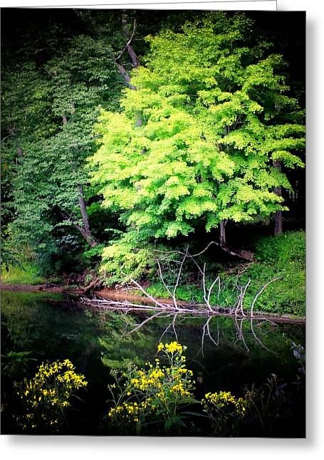 River Scenes Greeting Cards - Peace on the River Greeting Card by Michael L Kimble