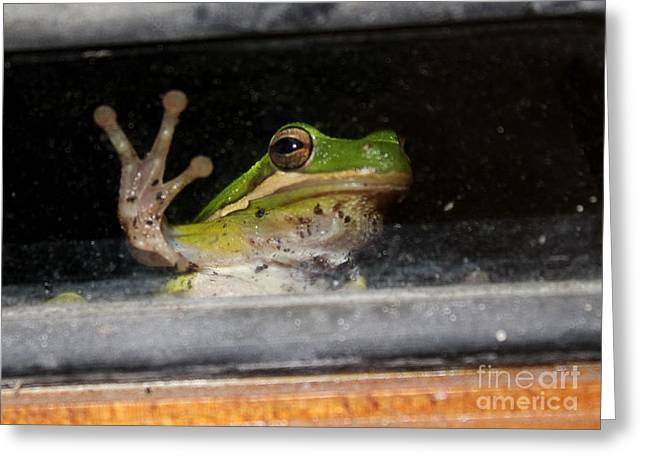 Peace Out Frog Greeting Card by Theresa Willingham