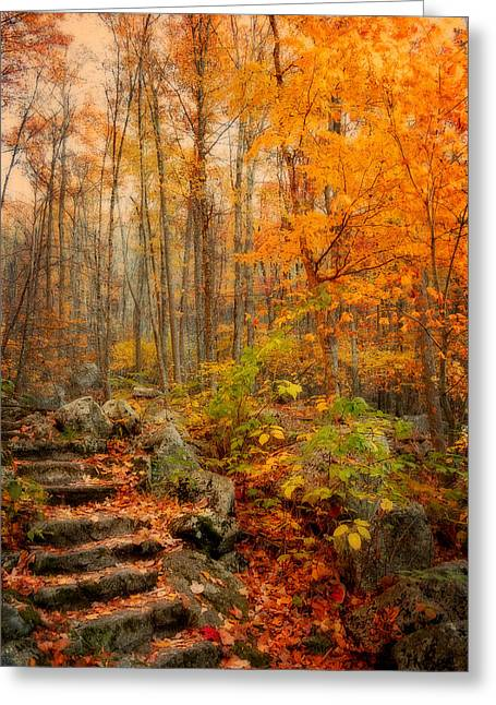 Fall Photography Greeting Cards - Peaceful Pathway Greeting Card by Kathy Jennings