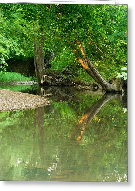 West Fork Greeting Cards - Peaceful Pond Greeting Card by Douglas Barnett
