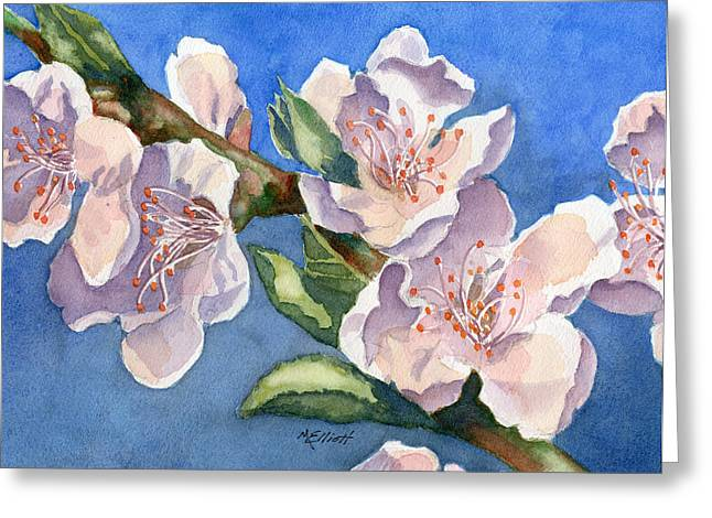 Peaches Greeting Cards - Peach Blossoms Greeting Card by Marsha Elliott