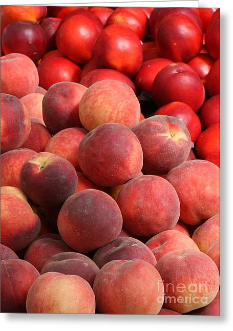Peaches And Nectarines Greeting Card by Carol Groenen