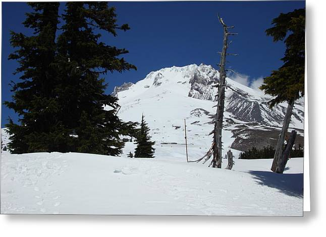 Ski Art Greeting Cards - Peak of Mt Hood Oregon Greeting Card by Glenna McRae