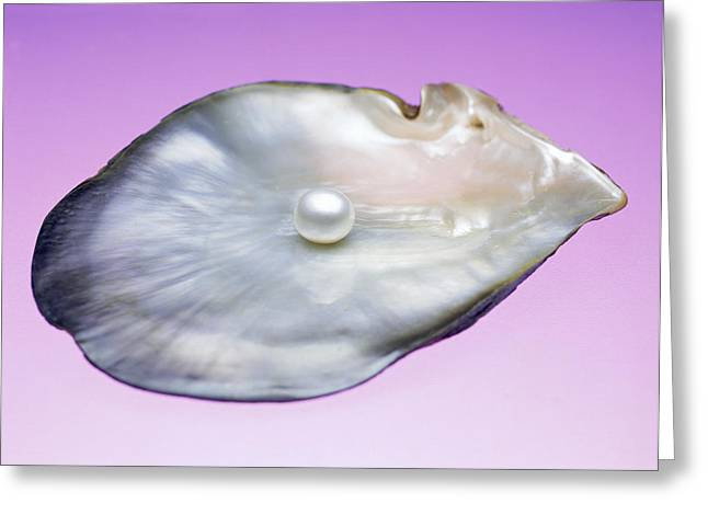 Jewellery Greeting Cards - Pearl In A Shell Greeting Card by Lawrence Lawry
