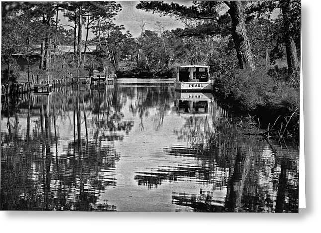 Crimson Tide Greeting Cards - Pearl in BW Greeting Card by Michael Thomas