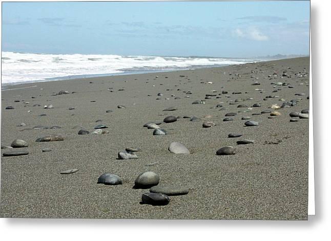 Pacific Ocean Prints Greeting Cards - Pebbled Beach Greeting Card by Kami McKeon
