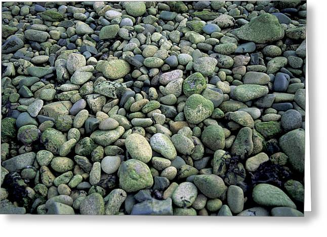 Pebbles Greeting Card by Bernard Jaubert