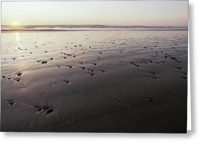 Pebbles Form Patterns On A Sandy Ocean Greeting Card by Jason Edwards