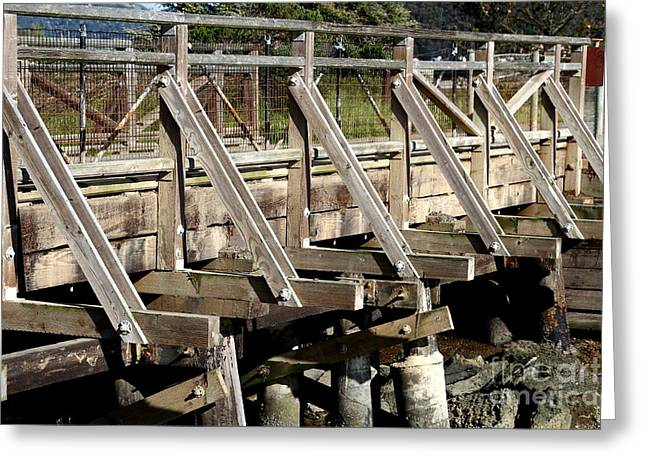 Pedestrian Bridge At Point Isabel In Richmond California . 7d15082 Greeting Card by Wingsdomain Art and Photography