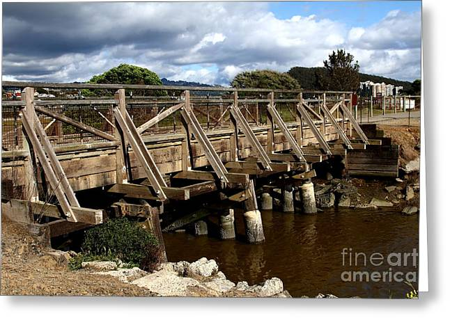 Pedestrian Bridge At Point Isabel In Richmond California . 7d15083 Greeting Card by Wingsdomain Art and Photography