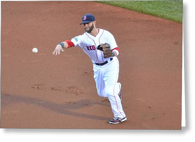 Dustin Pedroia Greeting Cards - Pedroia Greeting Card by Judd Nathan