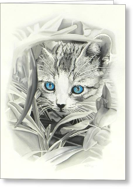 Cute Kitten Pastels Greeting Cards - Peeking Kitten Greeting Card by Paul Miners