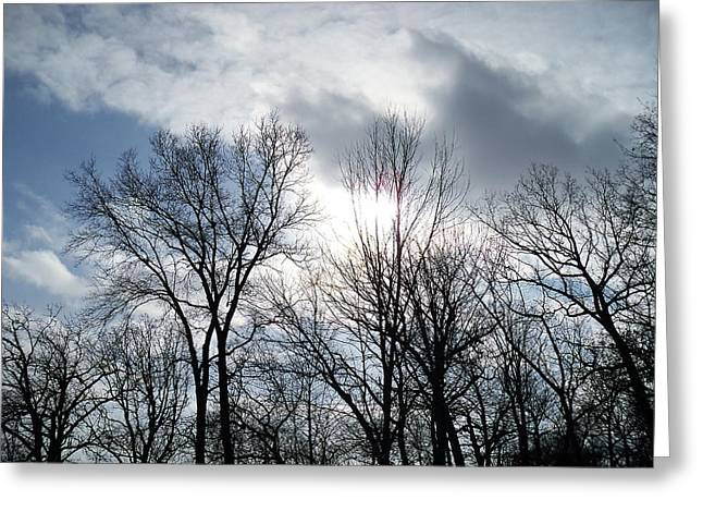 Mohawk Park Greeting Cards - Peeking Sun Through the Branches Greeting Card by Corinne Elizabeth Cowherd