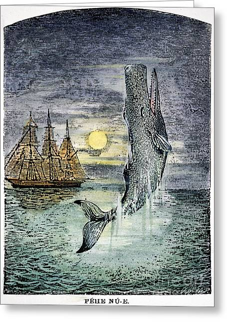 19th Century Photographs Greeting Cards - Pehe Nu-e: Moby Dick Greeting Card by Granger