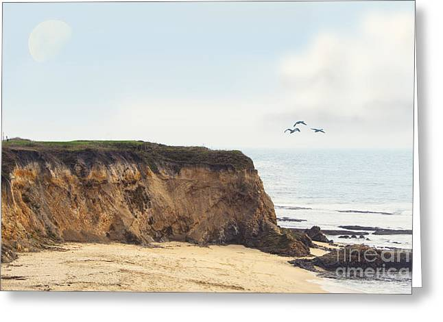 Half Moon Bay Greeting Cards - Pelican Point Greeting Card by Betty LaRue