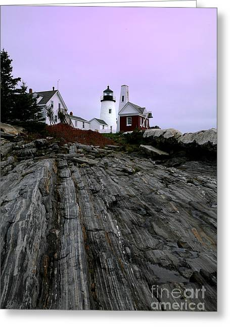 Pemaquid Lighthouse Greeting Cards - Pemaquid Light Greeting Card by Timothy Johnson