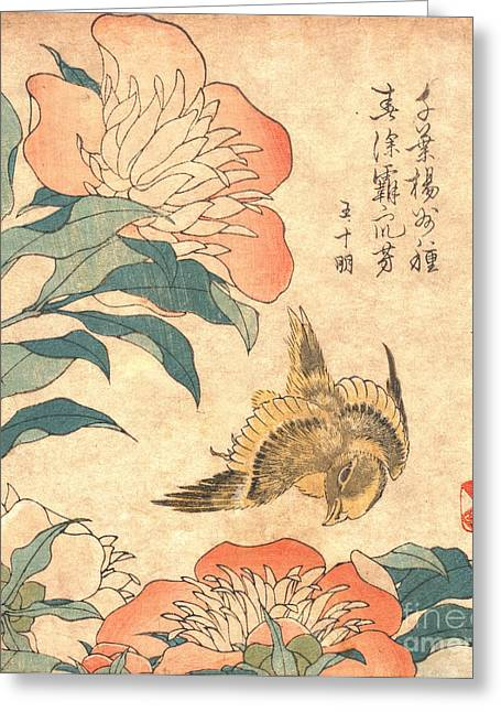 1833 Greeting Cards - Peony and Canary Greeting Card by Padre Art