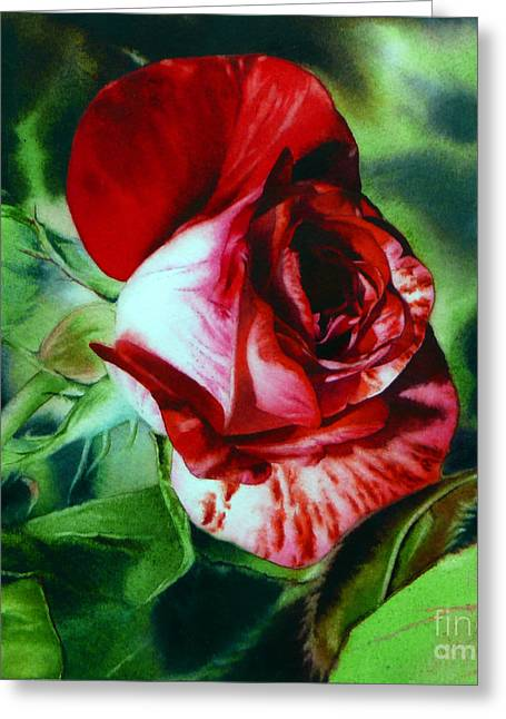Photorealistic Paintings Greeting Cards - Peppermint Rose Greeting Card by Arena Shawn