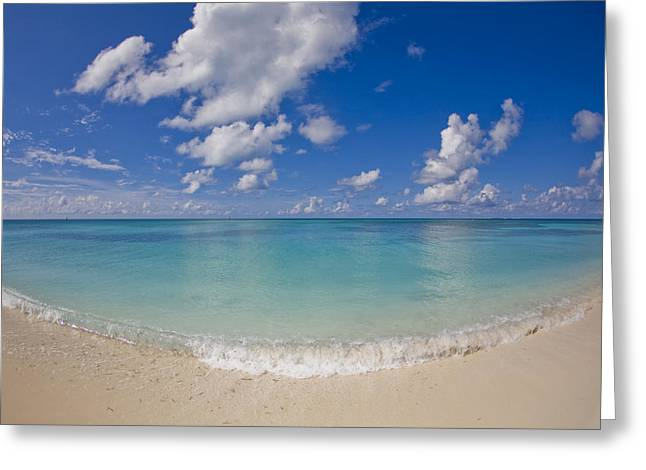Dry Tortugas Greeting Cards - Perfect Beach Day With Blue Skies Greeting Card by Mike Theiss