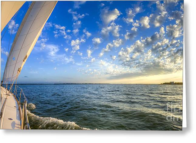 Amazing Sunset Greeting Cards - Perfect Evening Sailing on the Charleston Harbor Greeting Card by Dustin K Ryan