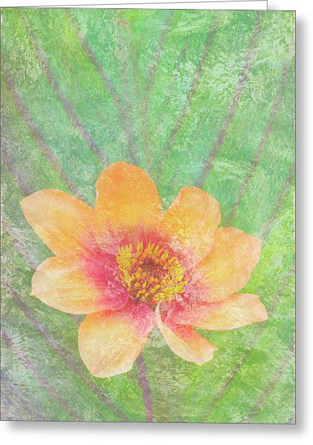 Butterfly Paintings Greeting Cards - Perfect Peach Greeting Card by JQ Licensing