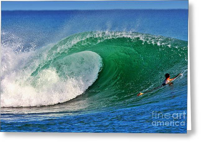 Surf Art Greeting Cards - Perfect View Greeting Card by Paul Topp