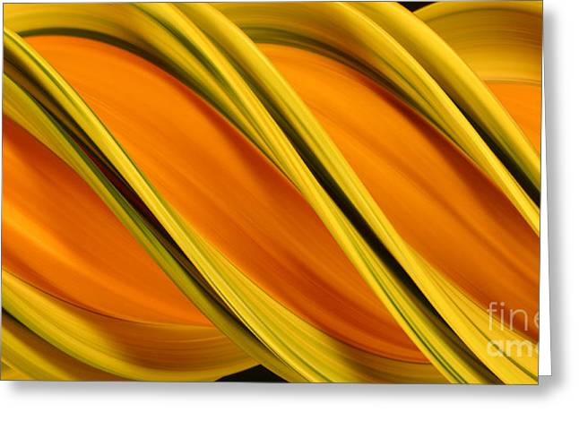 Peripheral Streak Image Of Squash Greeting Card by Ted Kinsman