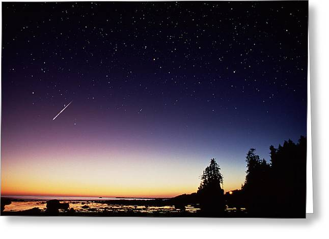 Perseid Photographs Greeting Cards - Perseid Meteor Trail Greeting Card by David Nunuk