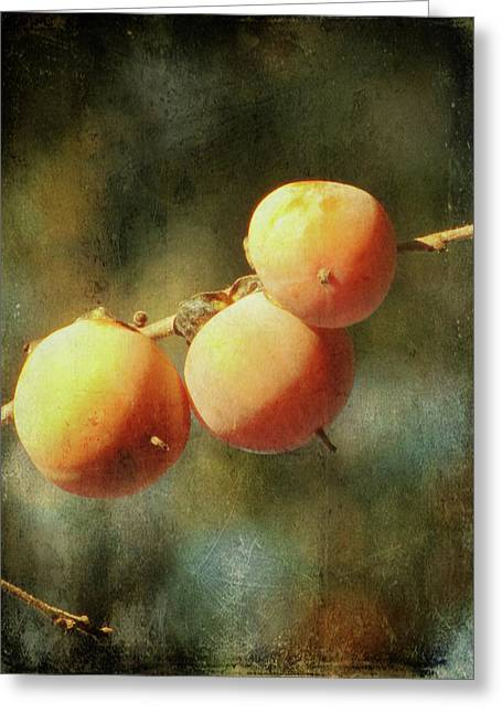 Apricot Tree Greeting Cards - Persimmons Greeting Card by Amy Tyler