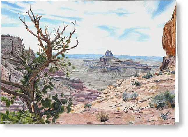 Summer Landscape Drawings Greeting Cards - Perspective Greeting Card by Nichole Taylor