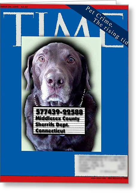 Front Page Greeting Cards - Pet Crime Greeting Card by Ross Powell